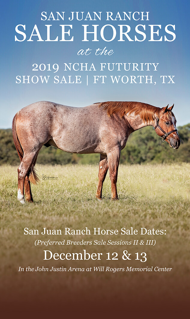 Sale horses at the 2019 NCHA Futurity Sale in Fort Worth Tx on December 12 and 13! Click to learn more.